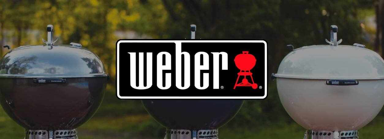 Shop Weber grills at Dries
